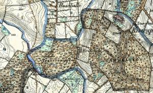 Tranesvænget med angivelse af stendysen på et gammelt kort fra 1842 - 1899 (Grundkort Fyn).