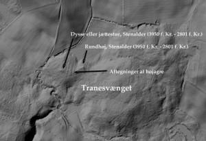 Lokalt højdekort viser Tranesvænget med gravhøje og højagre. Fra Grundkort Fyn.