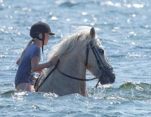 Jøkull in the water