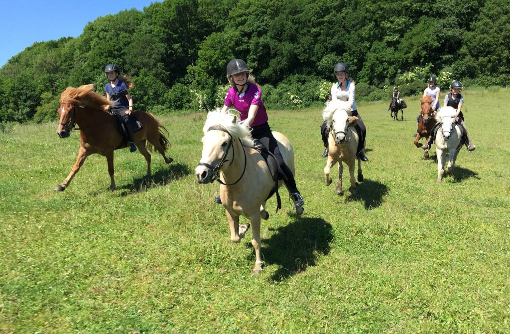 Galopp-Feld Ridelejr Juli 2015