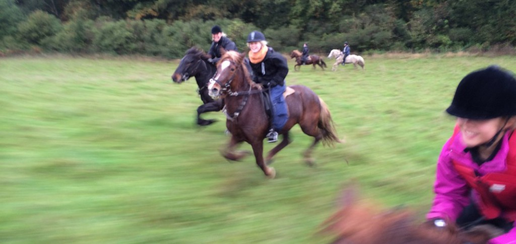 The childre and horses having a good time in the autumn on the first riding camp in 2014 - see the pictures here.