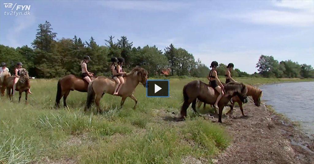 TV2 Fyns optagelser fra vores strandtur og badning med heste.